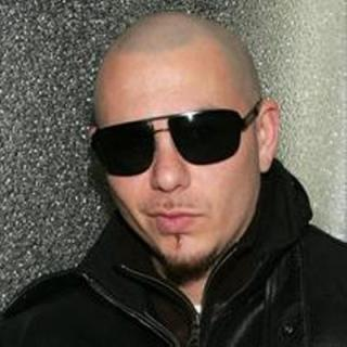 You heard that right, folks! Pitbull was actually in a film, an ANIMATED film, to be precise!